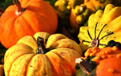 The Unexpected Health Benefits of Pumpkin