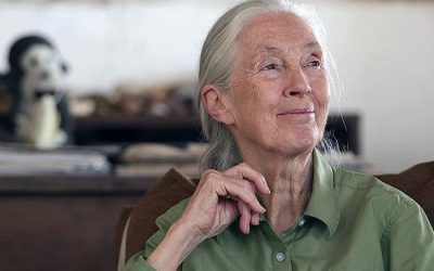 A Conversation With Jane Goodall: 4 Lessons on Aging, Communicating & the Environment
